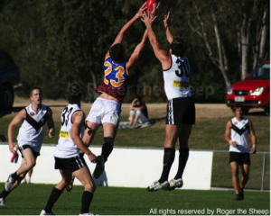 australian rules football strength training improve jumping vertical leap